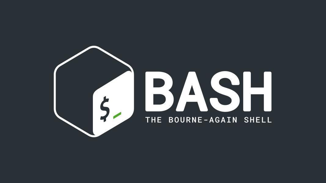 怎样用 Bash 编程:逻辑操作符和 shell 扩展