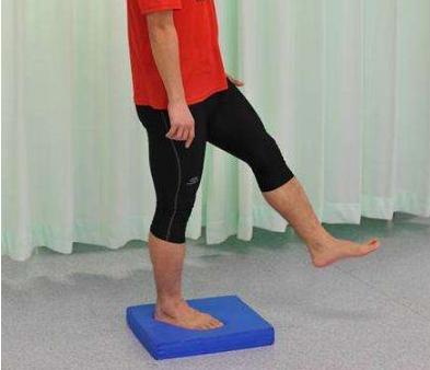 小腿肌肉_脚踝扭伤之后如何恢复到正常功能? - 知乎