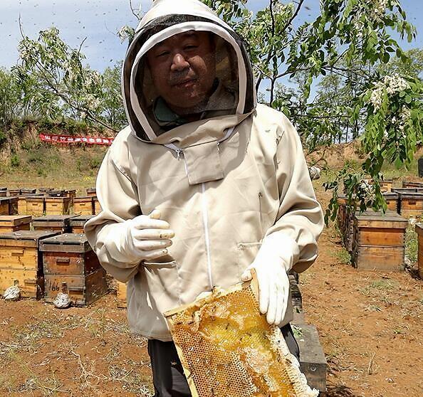 蜂窝蜂蜜真实和错误的识别?如何识别蜂窝的真假?