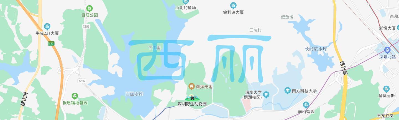 深圳楼市区域巡礼之:西丽的华丽逆袭二