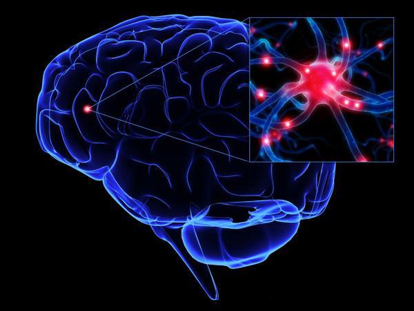 人工智能的未来--神经科学启发的类脑计算综述
