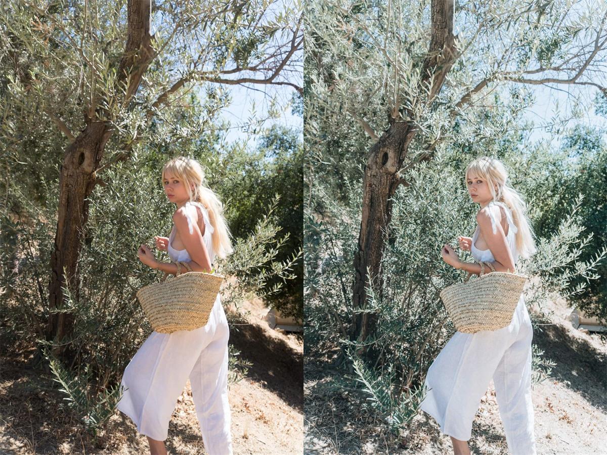 【S587】时尚博主Sarah Loven 精品人像胶片颗粒感富士电影胶片lr预设  Summer Villa Pack