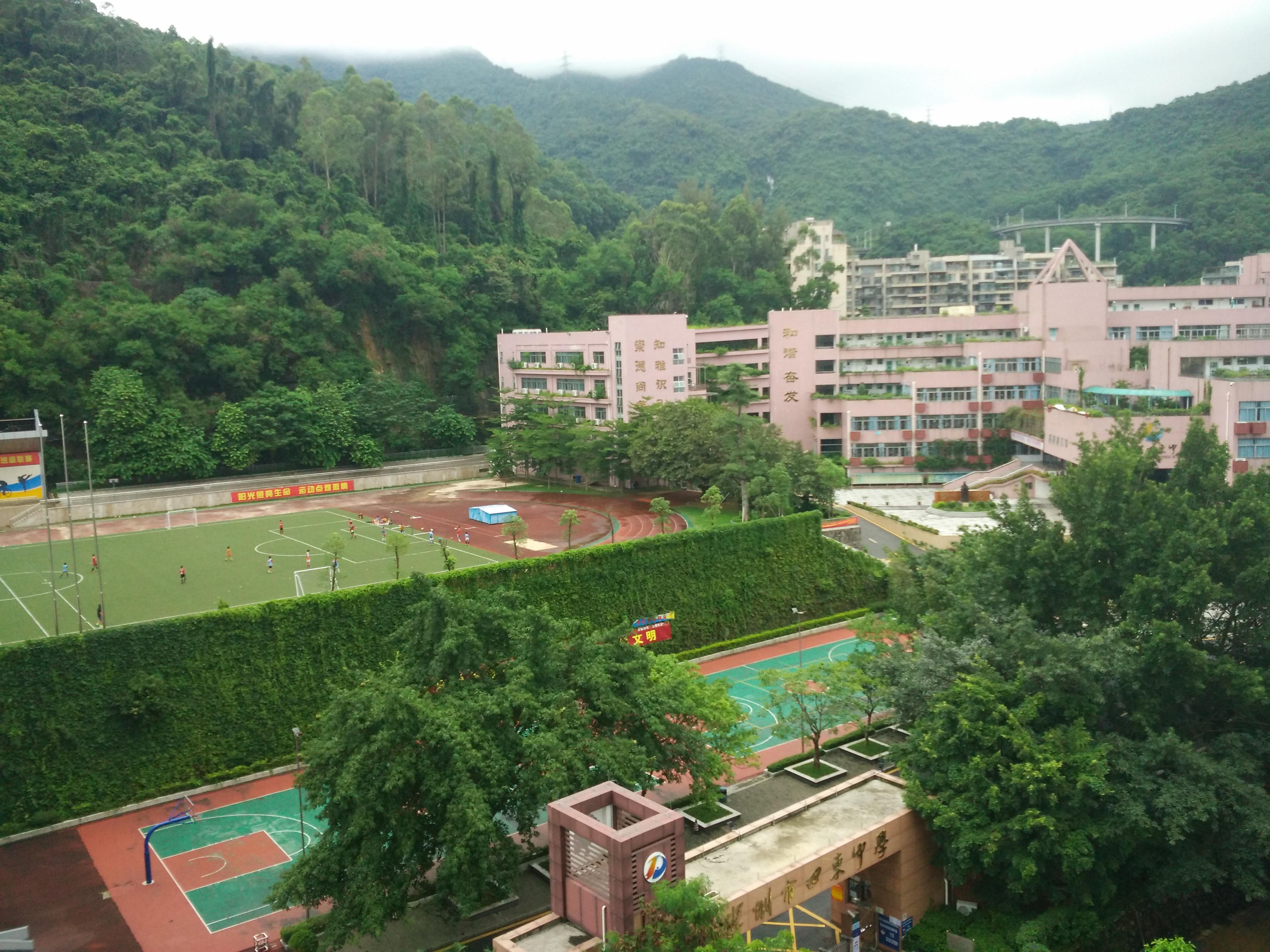 在深圳市田东中学读书是一种怎样的体验?