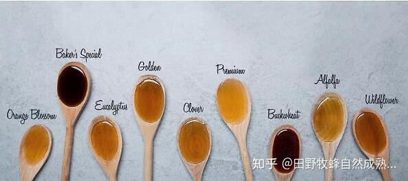 识别蜂蜜的最佳方式?蜂蜜如何区分真假?