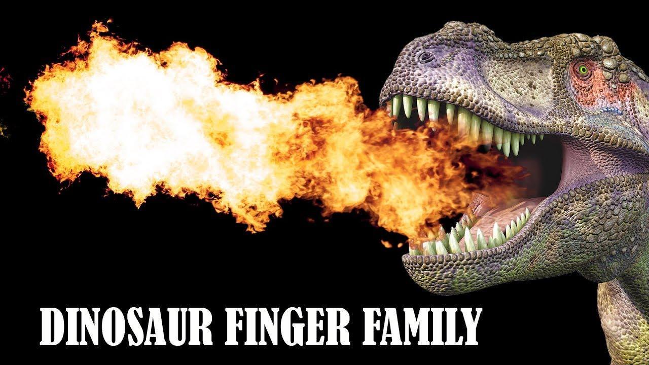 如何给恐龙测体温?