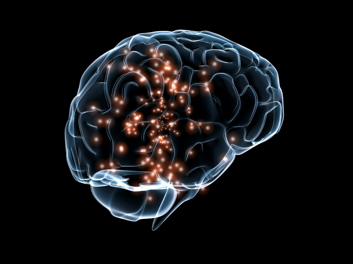 记忆的分类及其理论模型
