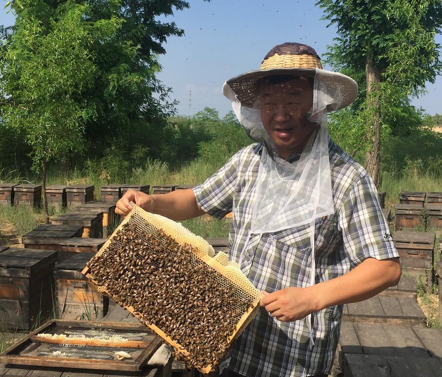 什麽是蜂∞�z?血糖吃蜂�z々有效�幔�
